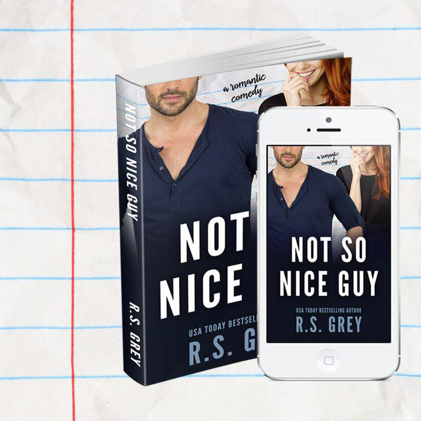 not so nice guy r.s. grey