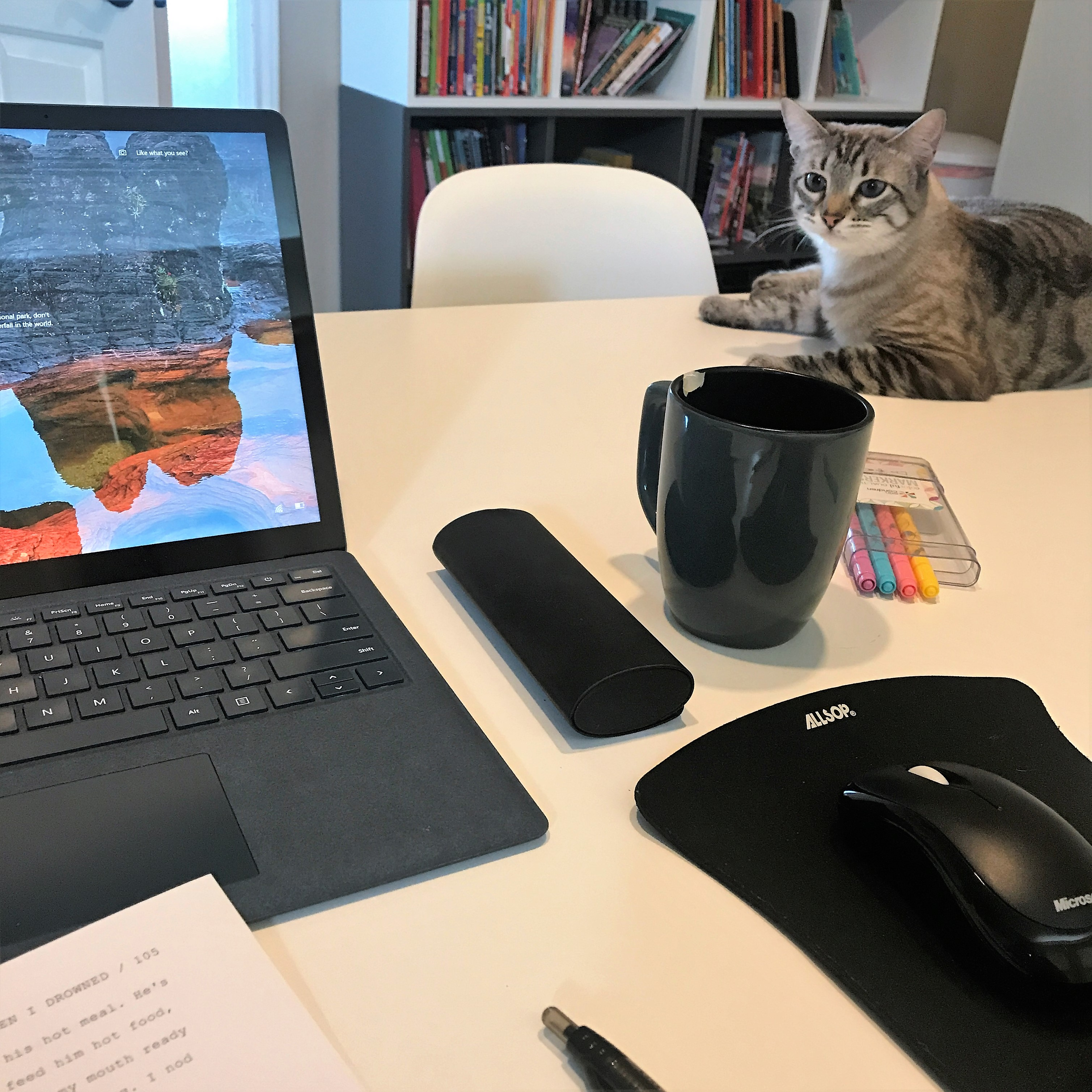 stealing your time  – how i make time to write